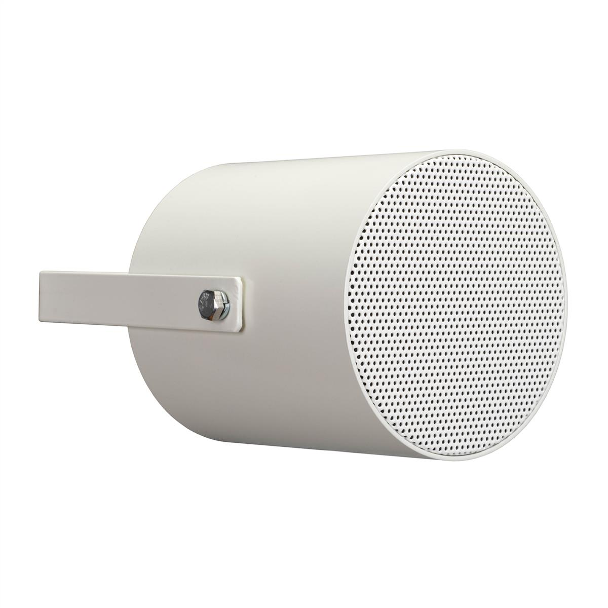 Apart 6 in two-way ceiling speaker 100 volt / 10 watts