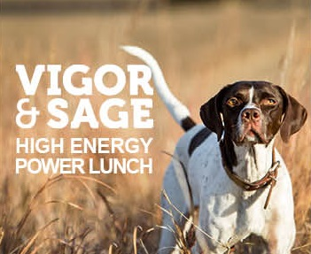 VIGOR & SAGE High Energy Power Lunch