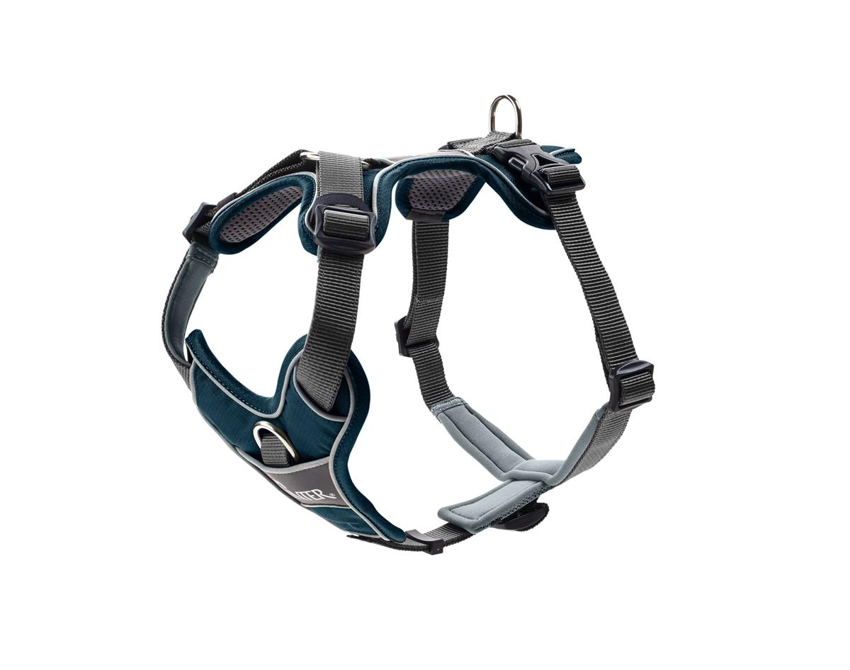 Harness Divo L petrol-blue/grey