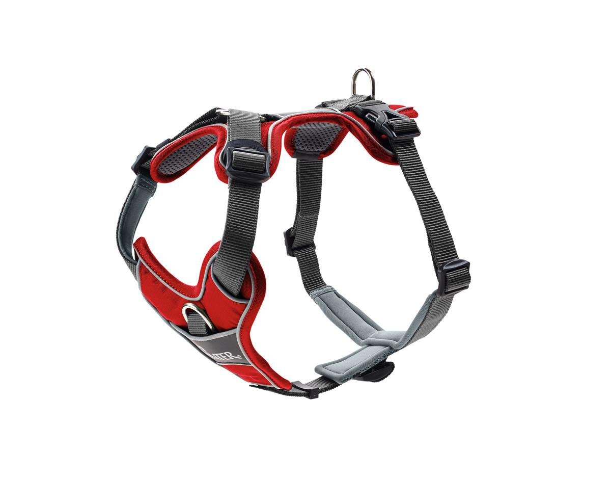 Harness Divo S red/grey