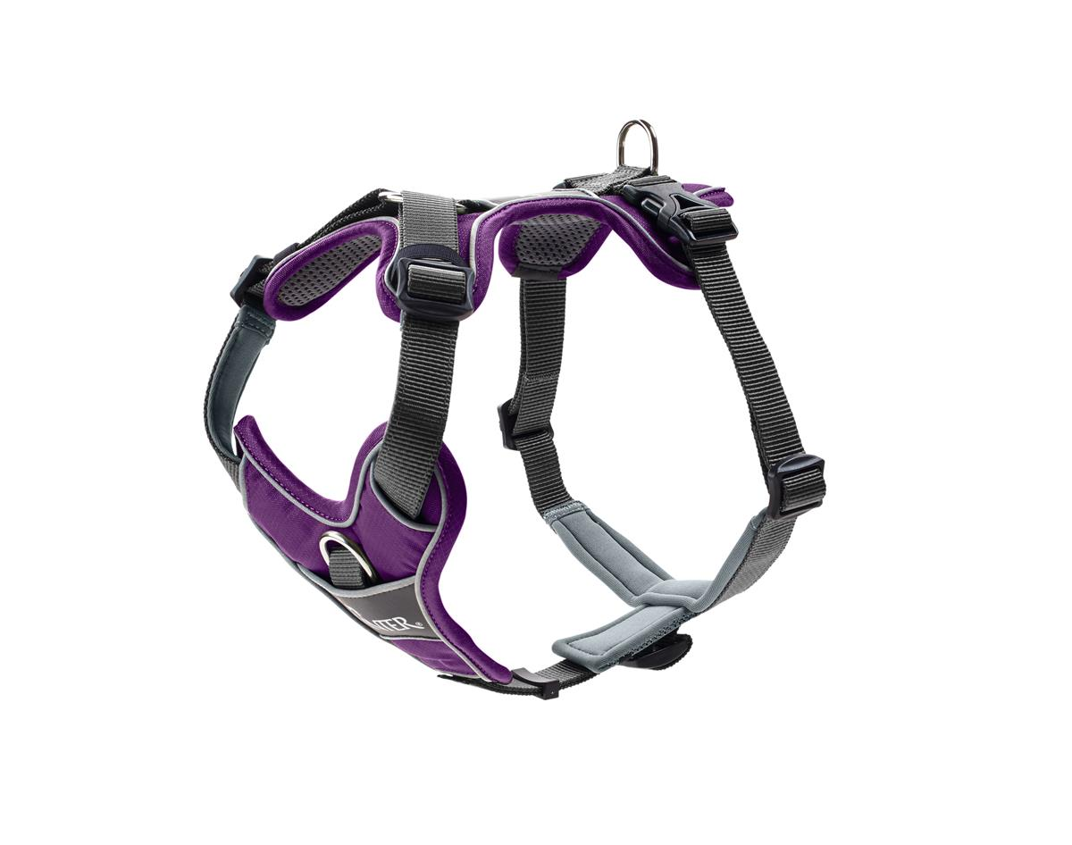 Harness Divo S-M violet/grey