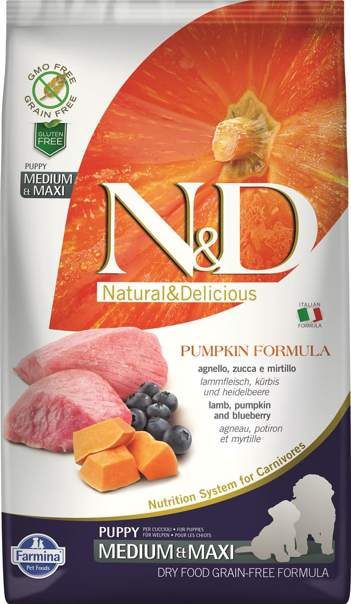 FARMINA N&D DOG PUMPKIN LAMB & BLUEBERRY PUP MED/MAX 2,5 KG