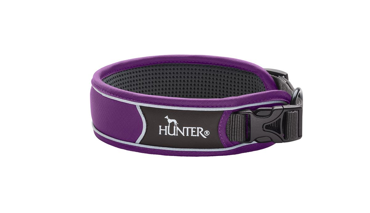 Collar Divo L violet/grey