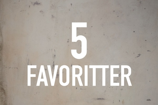 5 favoritter med stylisten, influenceren & KMS eksperten