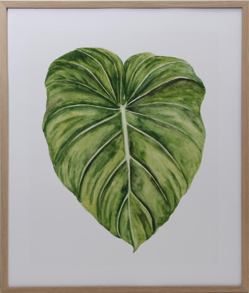 Bilde Tropical leaves I + II 50x60