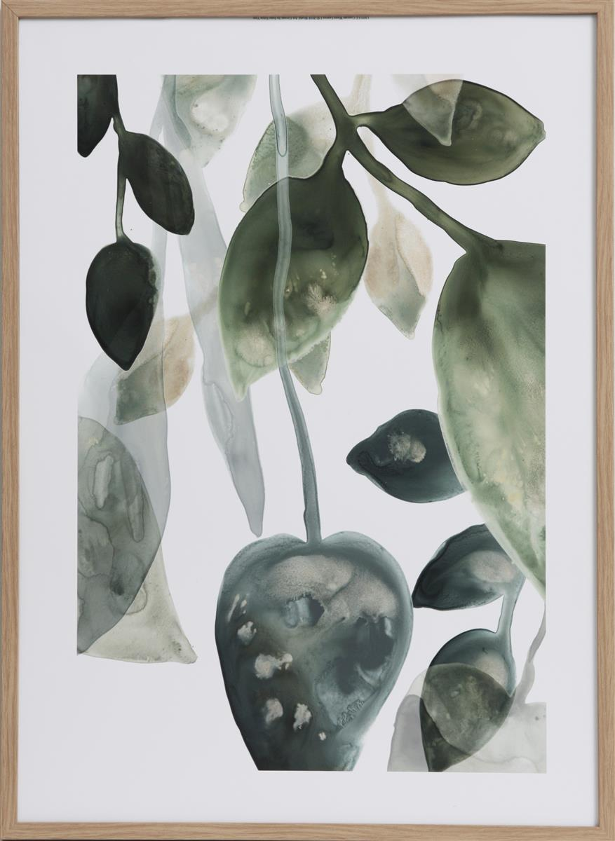 Bilde Water Leaves I 50x70