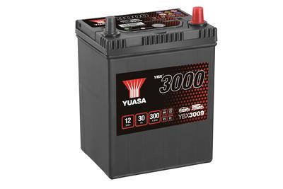 YBX3009 (12V 30Ah)