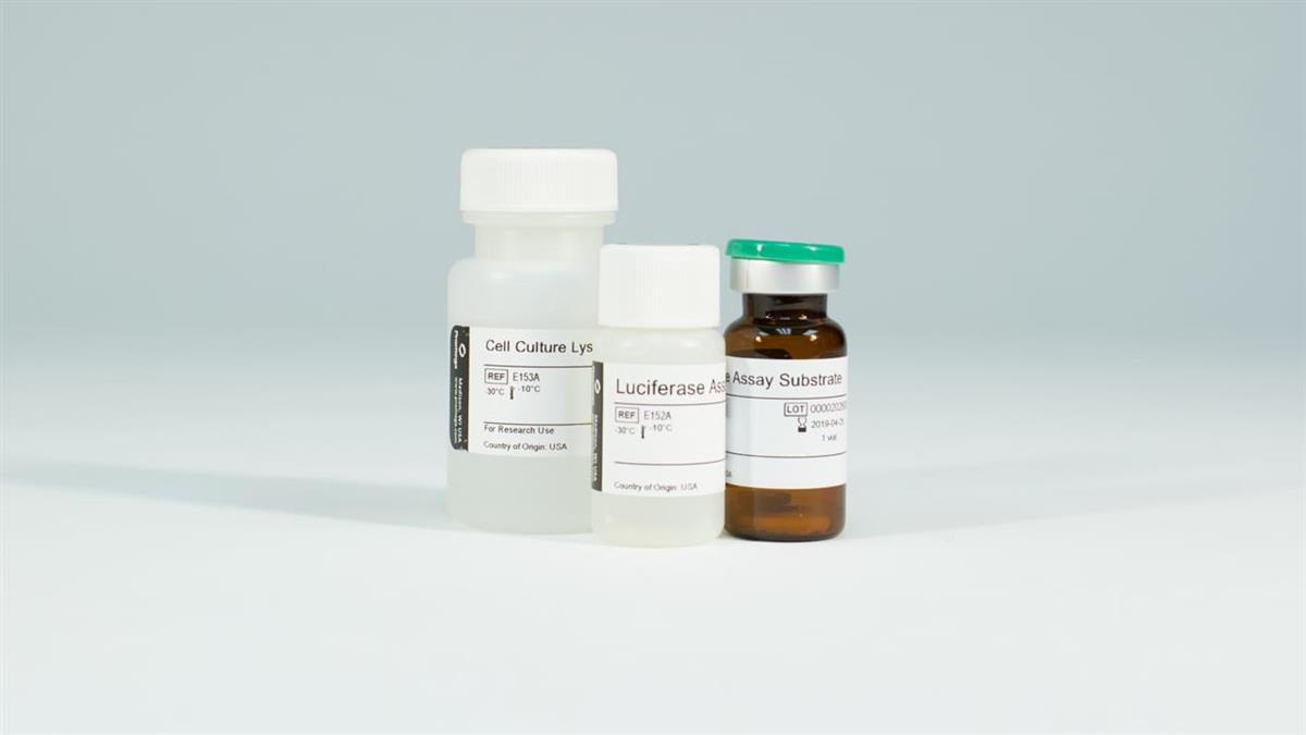 Luciferase 1000 Assay System
