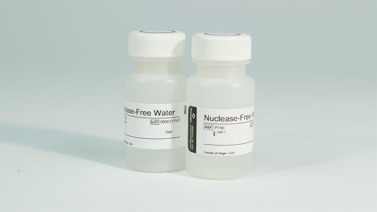Nuclease-Free Water