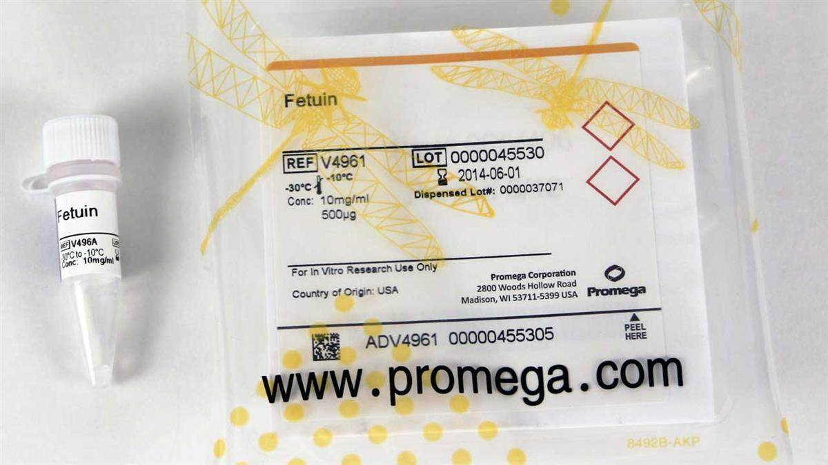 Fetuin, 10mg/ml